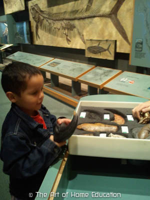 Denver Museum of Nature & Science. Maximan examining the differe