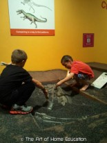 Denver Museum of Nature & Science. The new generation of paleont
