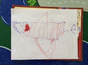 Project Shark
