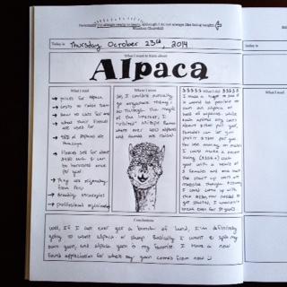 The learning journal the art of home education tea alpaca solutioingenieria Gallery
